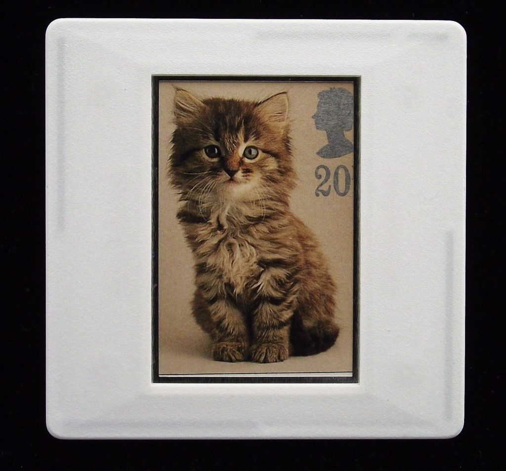 Kitten brooch - illustration by Tony Evans - Stamp Style badge