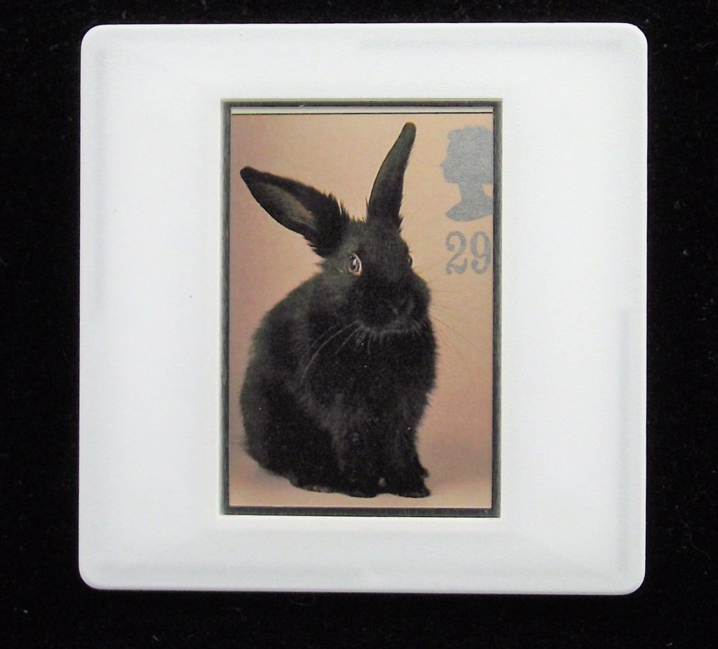 Rabbit brooch - illustration by Tony Evans - Stamp Style animal badges