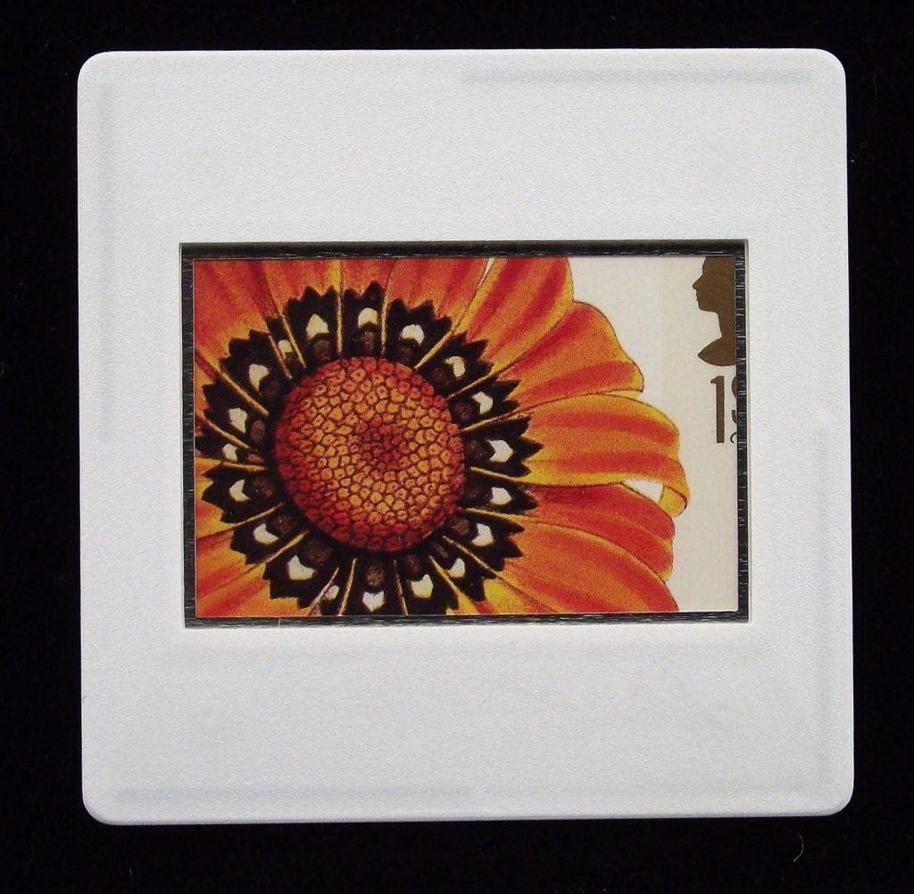 Guzmania Splendens - flower brooch