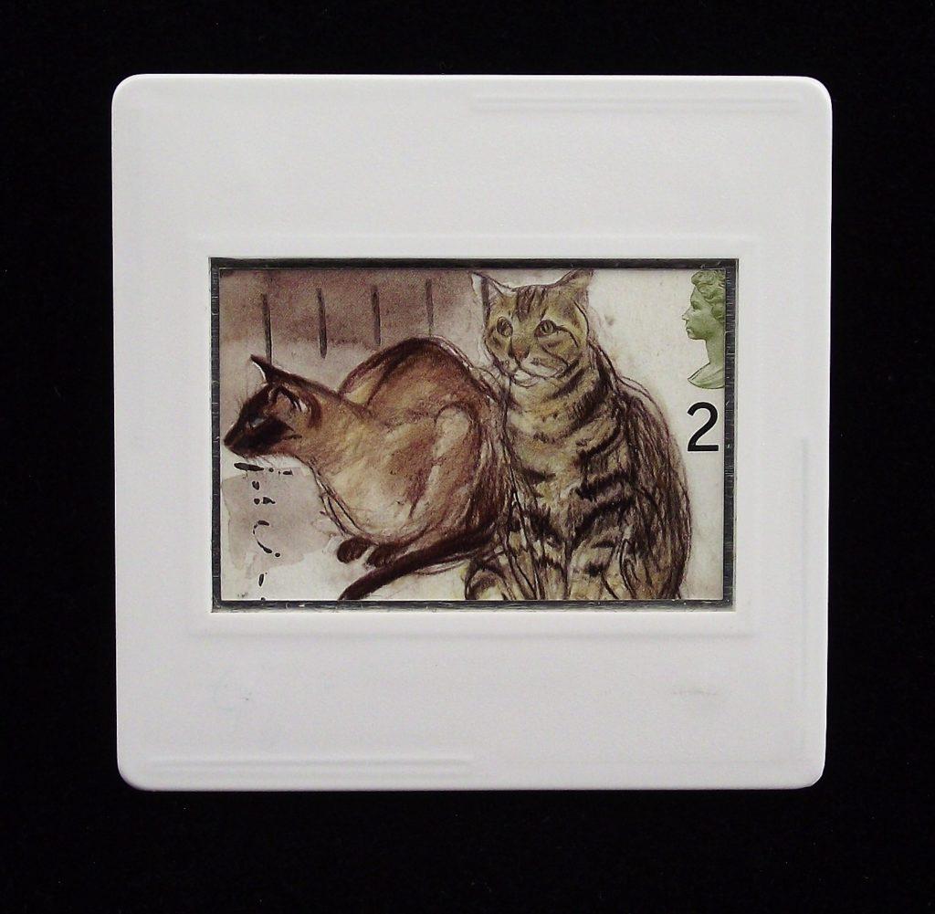 Cats brooch - Elizabeth Blackadder - Puskas (Siamese) and Tigger (tabby) - animal brooches