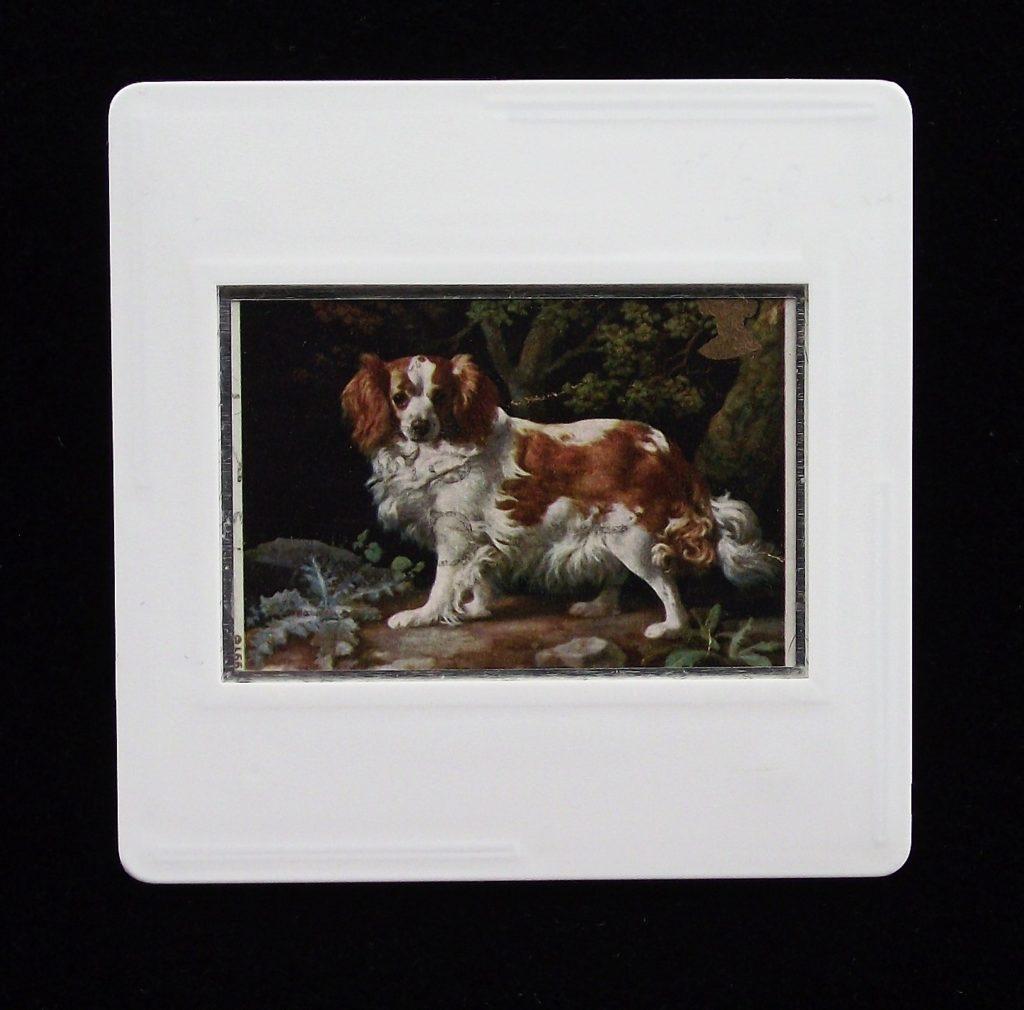 Dog brooch - Kings Charles Spaniel - George Stubbs