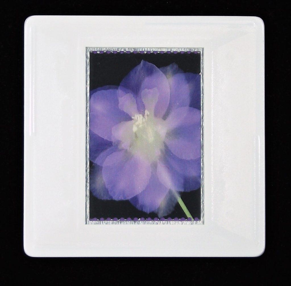Delphinium brooch - RHS bicentenary stamp