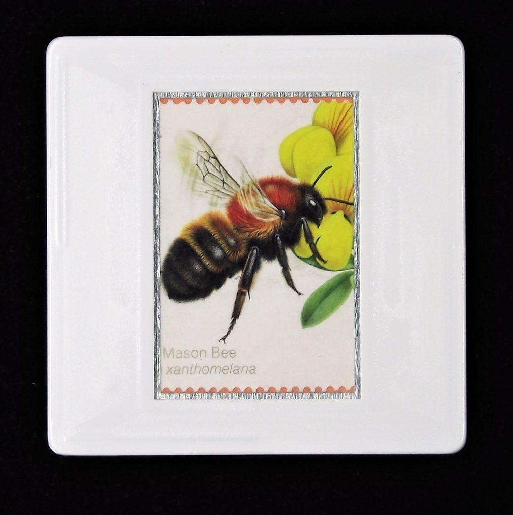 Large Mason Bee brooch (Osmia xanthomelana)