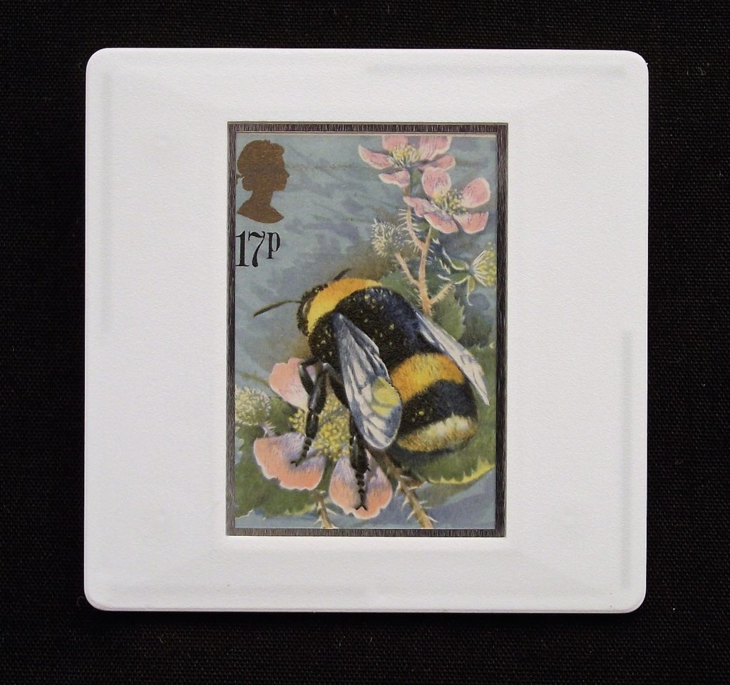 British Buff Tailed Bumble Bee brooch - Bombus terrestris