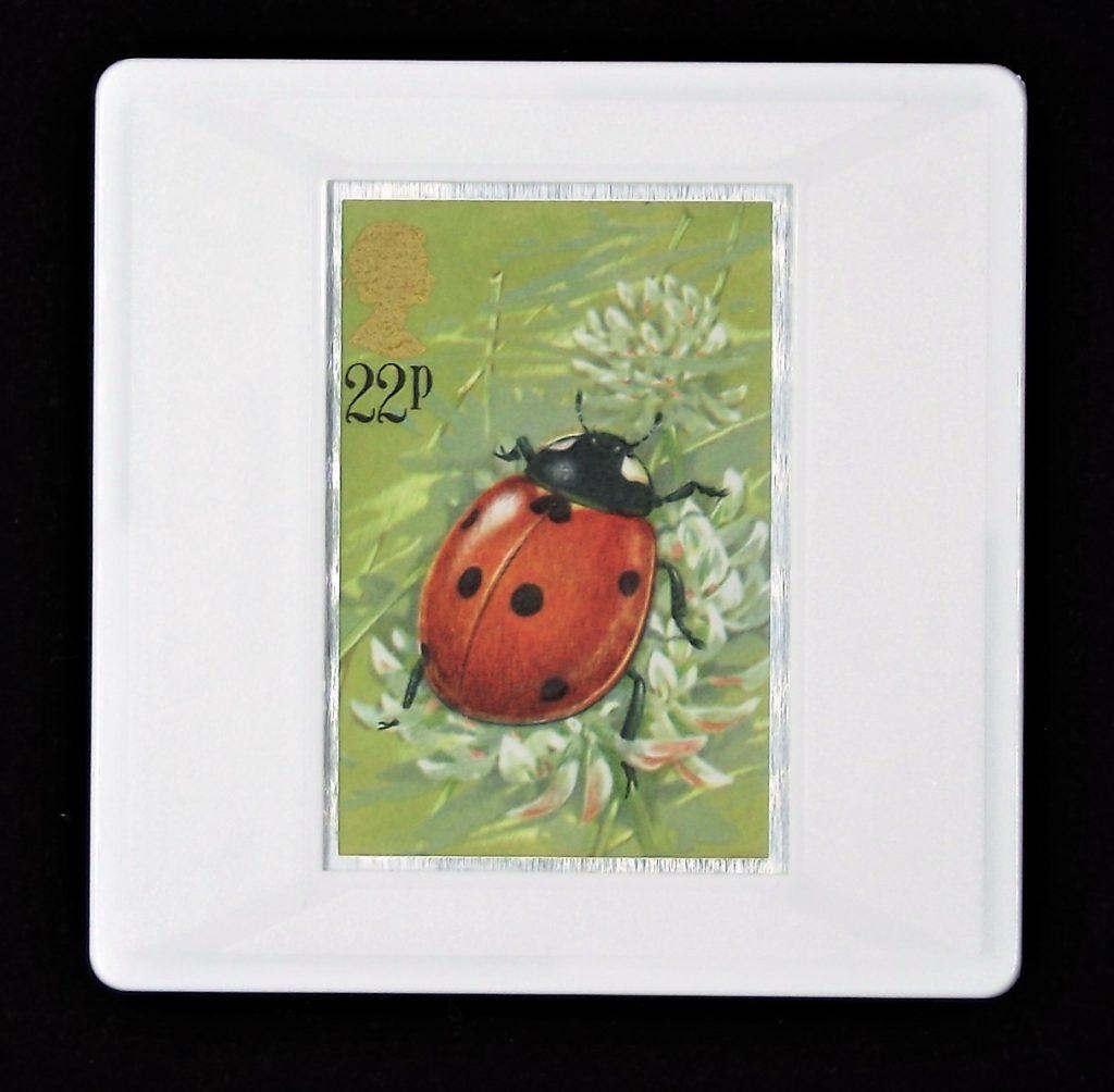 Ladybird brooch - (Coccinella septempuncata)
