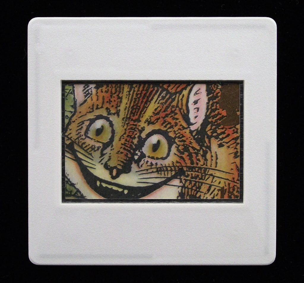 Cheshire Cat Brooch - Harry Willock