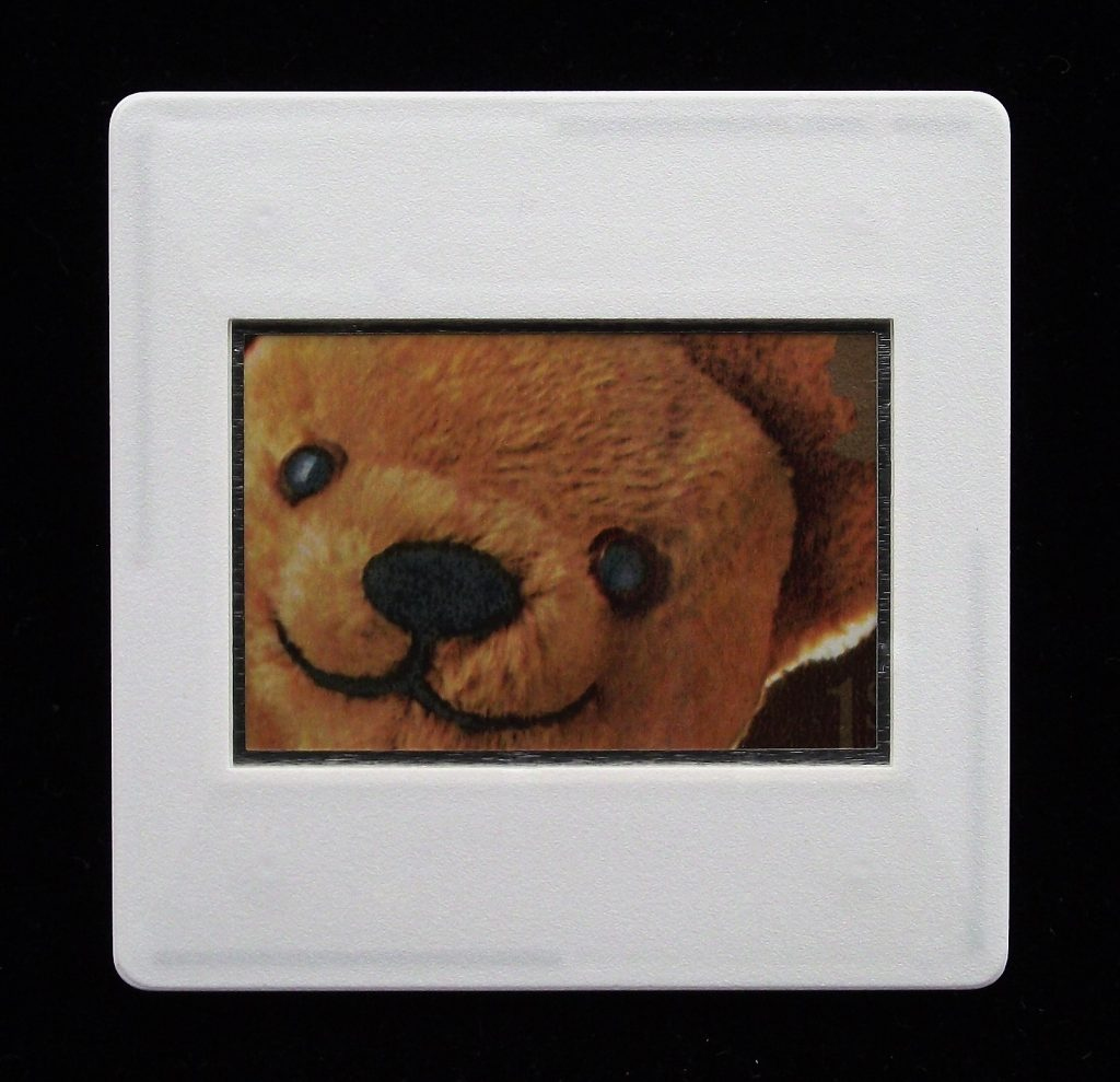 Teddy Bear Brooch - Peter Higgins